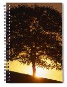 Oak Metal Spiral Notebook