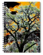 Oak Oasis Spiral Notebook