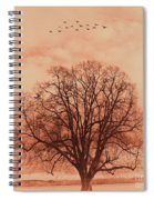 Oak Tree Alone  Spiral Notebook