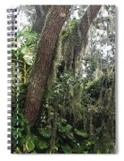 Oak Tree With Spanish Moss Spiral Notebook