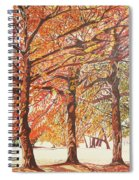 Oak Trees In The Park Spiral Notebook