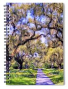 Oaks And Spanish Moss Spiral Notebook