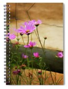 Oasis In The Desert Spiral Notebook