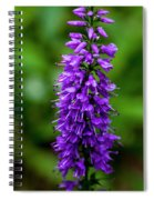 Obedient Plant Spiral Notebook