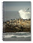 Ocean Angel II Splashed And Birds Spiral Notebook