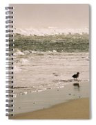 Ocean Edge Spiral Notebook