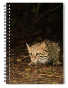 Ocelot Crouching At Night Looking For Food Spiral Notebook