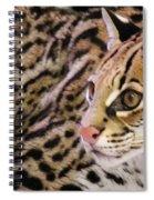 Ocelot Spiral Notebook