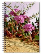 Ocotillo Wilds Spiral Notebook