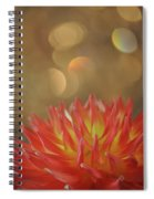 Octavia Spiral Notebook