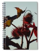 October Light Spiral Notebook