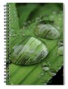 Big Drops Of Rain Spiral Notebook