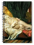 Odalisque With A Lute Spiral Notebook