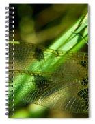Odanate Wing Spiral Notebook