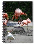 Odd Bird Out Spiral Notebook