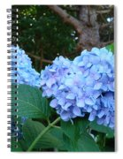 Office Art Hydrangea Flowers Blue Giclee Prints Floral Baslee Troutman Spiral Notebook