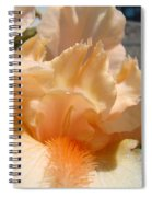 Office Art Irises Flower Orange Iris Flower Giclee Art Prints Baslee Troutman Spiral Notebook