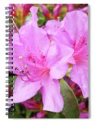 Office Art Pink Azalea Flower Garden 3 Giclee Art Prints Baslee Troutman Spiral Notebook