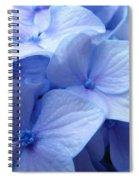 Office Art Prints Blue Hydrangea Flowers Giclee Baslee Troutman Spiral Notebook