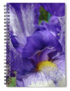 Office Art Prints Iris Flowers Purple White Irises 40 Giclee Prints Baslee Troutman Spiral Notebook