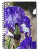 Office Art Prints Irises Flowers 46 Iris Flower Giclee Prints Baslee Troutman Spiral Notebook