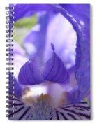 Office Art Prints Irises Purple Iris Flower Giclee Baslee Troutman Spiral Notebook