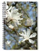 Office Art Prints Magnolia Tree Flowers Landscape 15 Giclee Prints Baslee Troutman Spiral Notebook