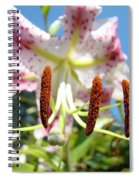 Office Art Prints Pink White Lily Flowers Botanical Giclee Baslee Troutman Spiral Notebook