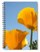 Office Art Prints Poppies Poppy Flowers Blue Skies Giclee Baslee Spiral Notebook