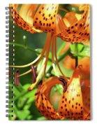 Office Art Prints Tiger Lilies Flowers Giclee Baslee Troutman Spiral Notebook