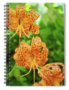 Office Art Prints Tiger Lilies Flowers Nature Giclee Prints Baslee Troutman Spiral Notebook