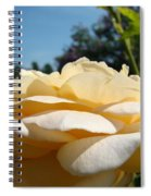 Office Art Rose Landscape Peach Roses Flowers Giclee Baslee Troutman Spiral Notebook