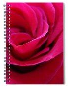 Office Art Rose Spiral Art Pink Roses Flowers Giclee Prints Baslee Troutman Spiral Notebook