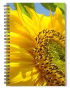 Office Art Sunflowers Giclee Art Prints Sun Flowers Baslee Troutman Spiral Notebook