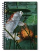 Oh Boy More Koi Spiral Notebook