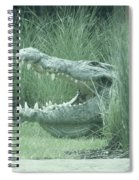 Oh My, What Big Teeth You Have Spiral Notebook