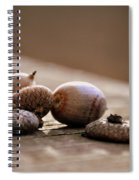 Oh Nuts Spiral Notebook