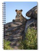 Oh So Regal Spiral Notebook