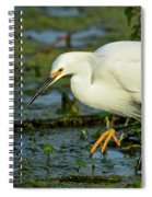 Oh Them Golden Slippers Spiral Notebook
