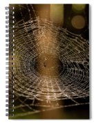 Oh What Tangled Webs.... Spiral Notebook
