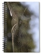 Oh What Webs We Weave Spiral Notebook