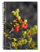 Ohelo Berries Spiral Notebook