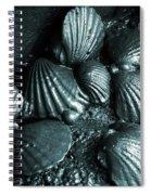 Oil Spill Spiral Notebook