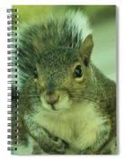Ok Boss Spiral Notebook