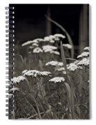 Oklahoma Prairie Flowers Spiral Notebook