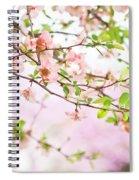 Oklahoma Spring Spiral Notebook