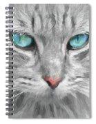 Ol' Blue Eyes Spiral Notebook