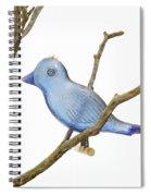 Old Bluebird Ornament Spiral Notebook