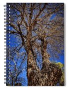 Old Cottonwood Spiral Notebook
