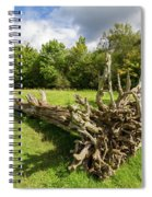 Old Cut Tree On A Meadow Spiral Notebook